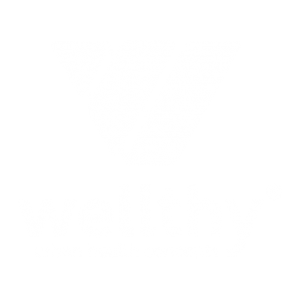 Wellthy Logo White
